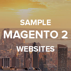 Sample Magento 2 websites